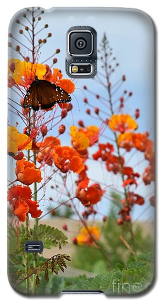 Butterfly On Bird Of Paradise Galaxy S5 Case