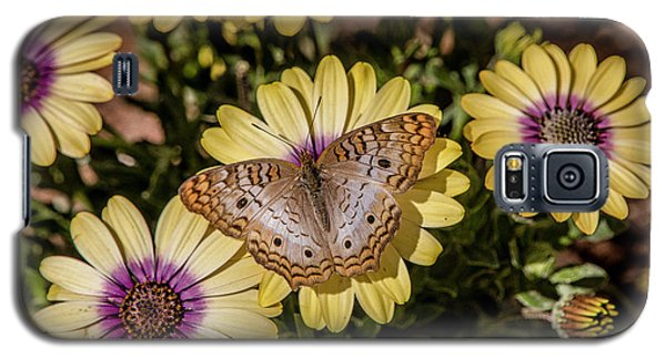 Butterfly On Blossoms Galaxy S5 Case