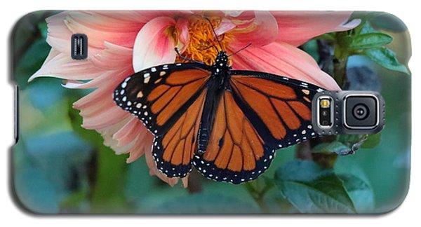 Butterfly On Dahlia Galaxy S5 Case