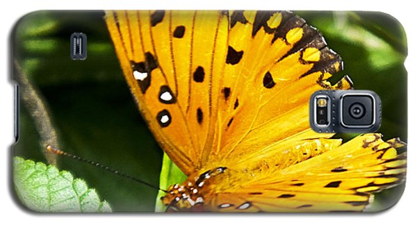 Galaxy S5 Case featuring the photograph Butterfly On Lantana by Bill Barber