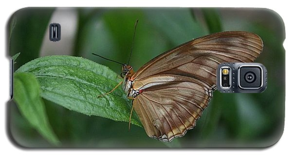 Galaxy S5 Case featuring the photograph Butterfly On Leaf by Cathy Harper