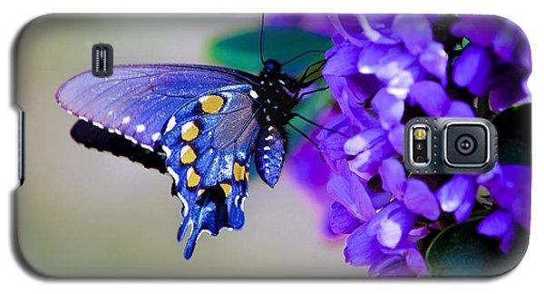Butterfly On Mountain Laurel Galaxy S5 Case