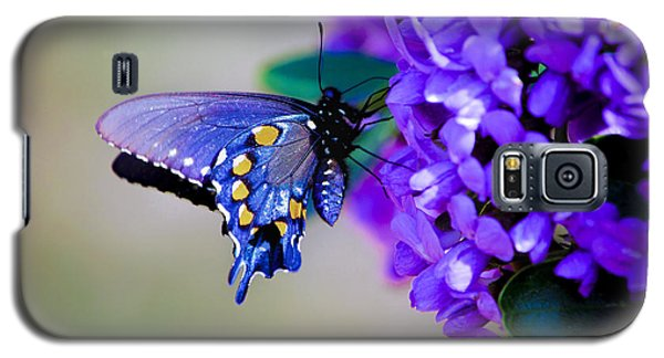 Galaxy S5 Case featuring the photograph Butterfly On Mountain Laurel by Debbie Karnes