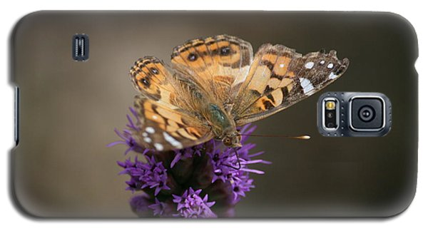 Galaxy S5 Case featuring the photograph Butterfly In Solo by Cathy Harper
