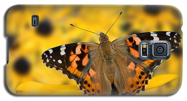 Butterfly On Rudbeckia Galaxy S5 Case