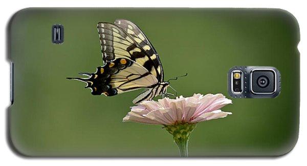 Butterfly On Zinnia Galaxy S5 Case