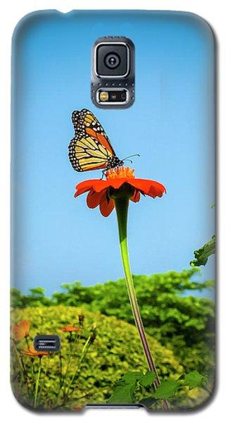 Butterfly Perch Galaxy S5 Case