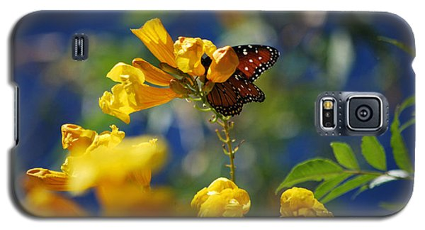 Galaxy S5 Case featuring the photograph Butterfly Pollinating Flowers  by Donna Greene