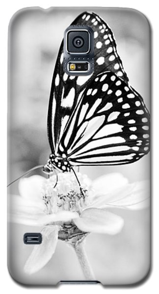 Galaxy S5 Case featuring the photograph Butterfly Wings 7 - Black And White by Marianna Mills