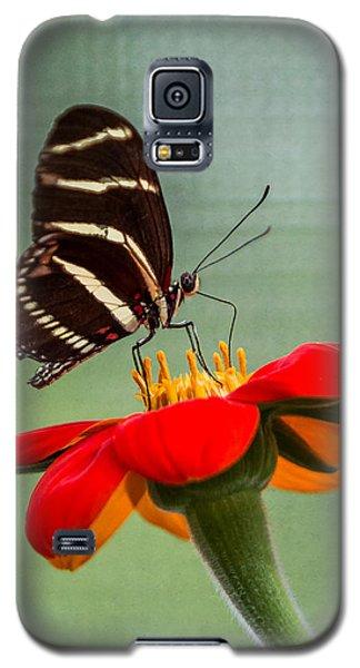 Butterfly Zebra Longwing On Zinnia Galaxy S5 Case