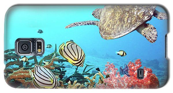 Butterflyfishes And Turtle Galaxy S5 Case by MotHaiBaPhoto Prints