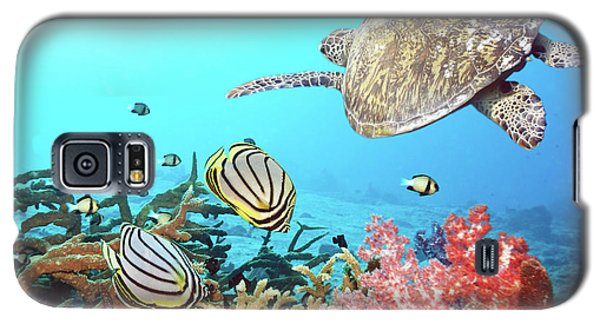 Butterflyfishes And Turtle Galaxy S5 Case