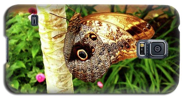 Butterfly's Eyes Galaxy S5 Case