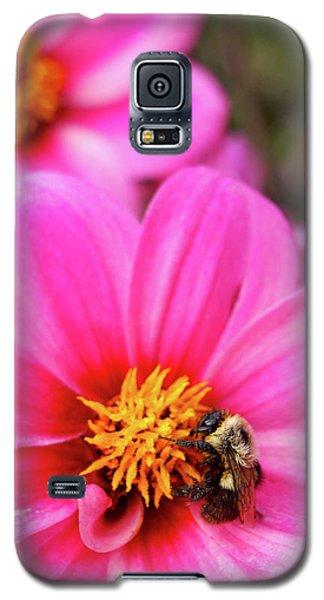 Buzz Galaxy S5 Case