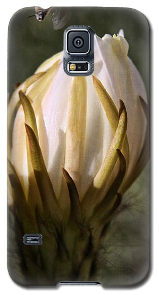 Galaxy S5 Case featuring the photograph Buzzz by Tammy Espino