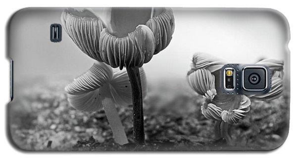Bw Mushroom - 365- 232 Galaxy S5 Case by Inge Riis McDonald
