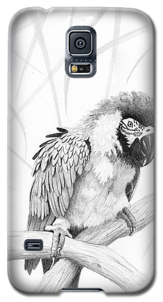 Bw Parrot Galaxy S5 Case