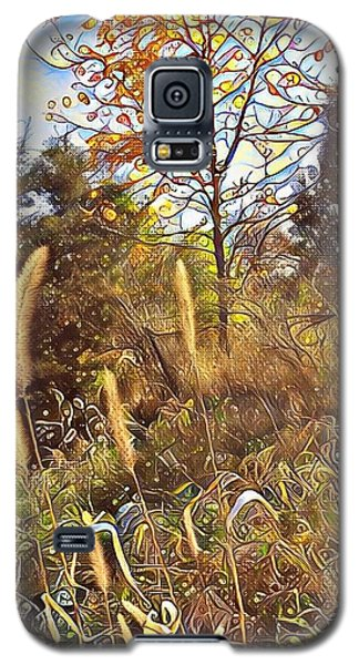 By The Railroad Tracks Galaxy S5 Case by Diane Miller