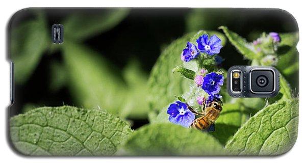 Bzzz... Galaxy S5 Case