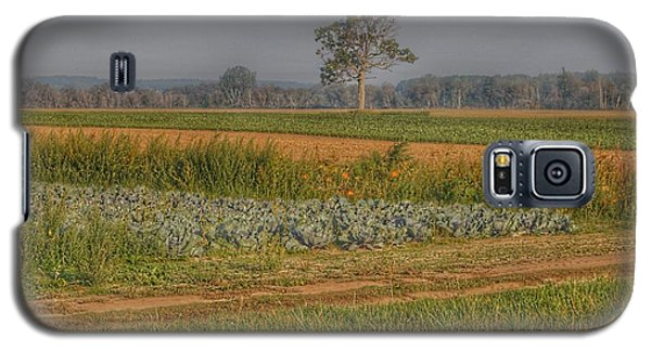 2009 - Cabbage And Pumpkin Patch Galaxy S5 Case