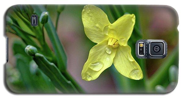 Cabbage Blossom Galaxy S5 Case