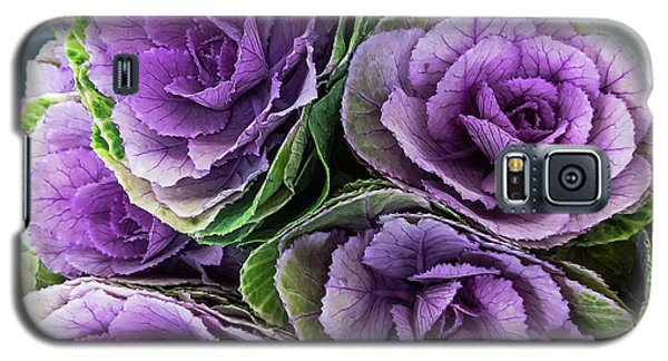 Cabbage Flower Galaxy S5 Case