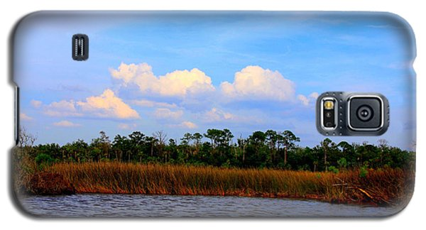 Galaxy S5 Case featuring the photograph Cabbage Palms And Salt Marsh Grasses Of The Waccasassa Preserve by Barbara Bowen