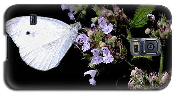 Cabbage White On Catnip Galaxy S5 Case