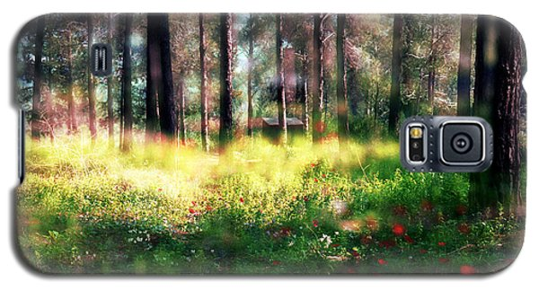 Galaxy S5 Case featuring the photograph Cabin In The Woods In Menashe Forest by Dubi Roman