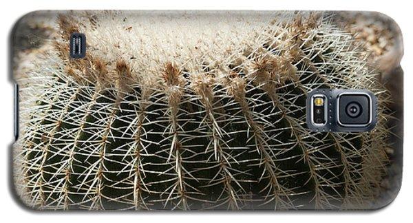 Cacti Fine Art Galaxy S5 Case