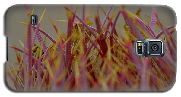 Galaxy S5 Case featuring the photograph Cacti by Rod Wiens