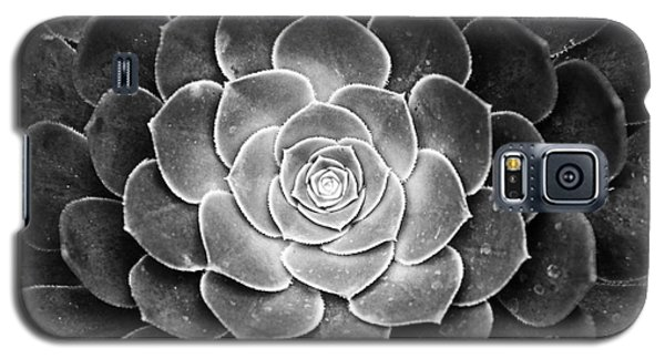 Cactus 18 Deep Bw Galaxy S5 Case