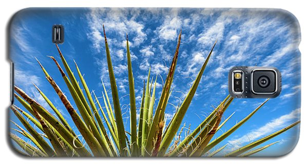 Cactus And Blue Sky Galaxy S5 Case