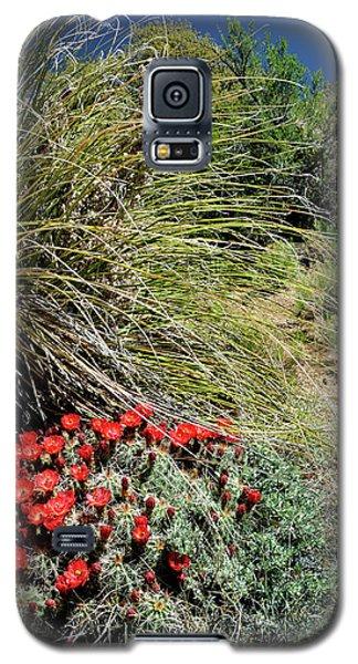 Crimson Barrel Cactus Galaxy S5 Case