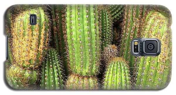 Cactus City Galaxy S5 Case