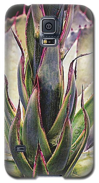 Galaxy S5 Case featuring the photograph Cactus Desert Plant by Julie Palencia