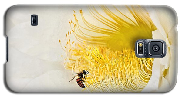 Galaxy S5 Case featuring the photograph Cactus Flower Diner No. 2 by Joe Bonita