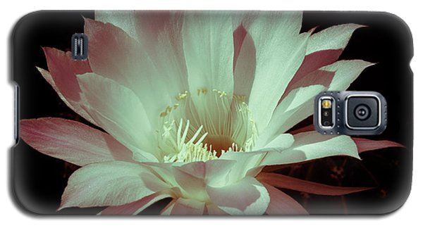 Cactus Flower Galaxy S5 Case