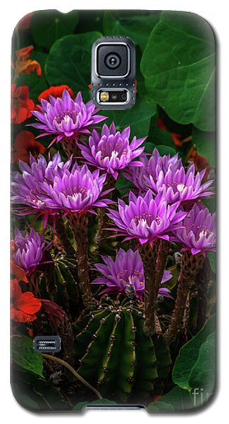 Cactus Flower Sonoma County Galaxy S5 Case