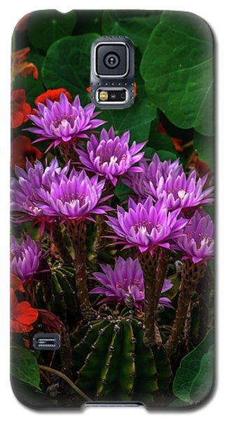 Cactus Flower Sonoma County Galaxy S5 Case