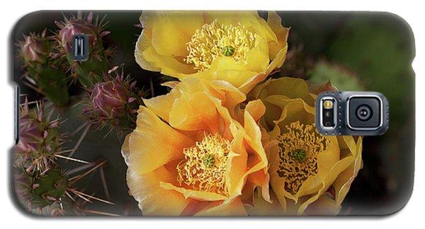 Yellow Cactus Flowers Galaxy S5 Case
