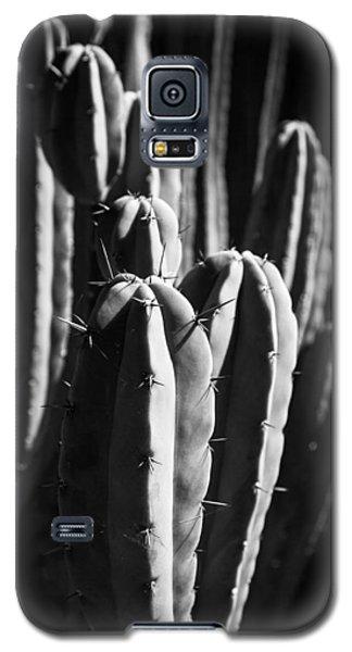 Cactus IIi Galaxy S5 Case