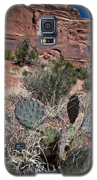 Cactus In Arches Nat'l Park Galaxy S5 Case
