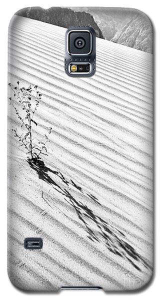 Cactus In Desert Galaxy S5 Case
