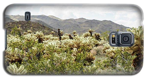 Cactus Paradise Galaxy S5 Case