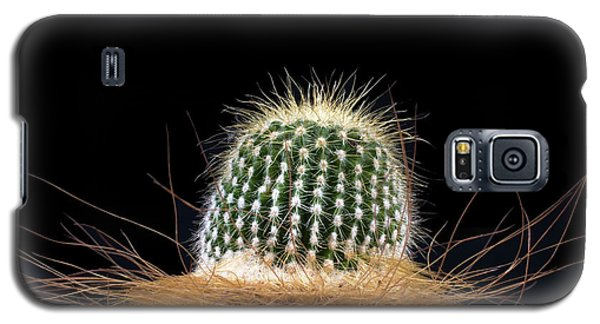 Galaxy S5 Case featuring the photograph Cactus Photo by Catherine Lau