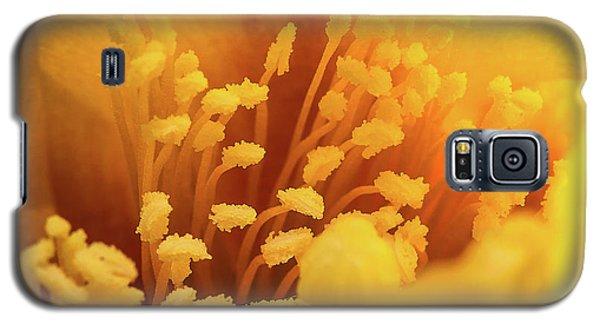 Cactus Pollen Galaxy S5 Case