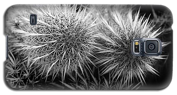 Galaxy S5 Case featuring the photograph Cactus Spines by Phyllis Denton