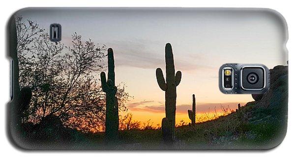 Cactus Sunset Galaxy S5 Case