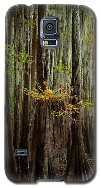 Caddo Lake #5 Galaxy S5 Case